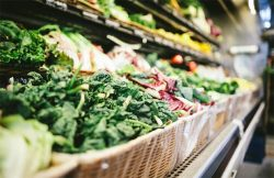 Vegetables in grocery shop