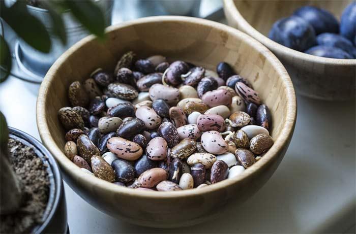 Bowl of whole grains