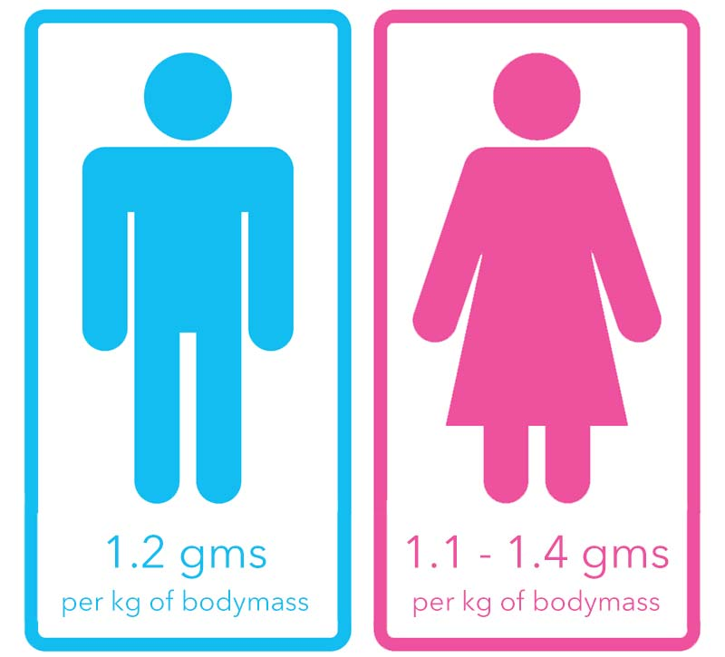 Vitamin B1 requirements for men and women