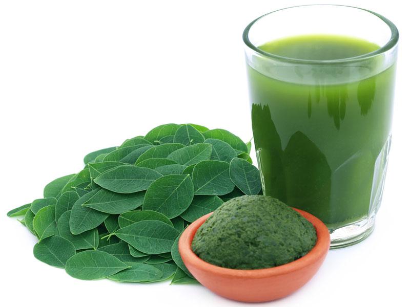 moringa oleifera leaves and greens drink